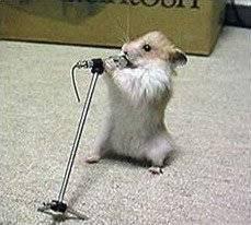 Hmster als Rockstar mit Mikrofon
