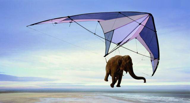Fliegender Elefant mit Gleitschirm