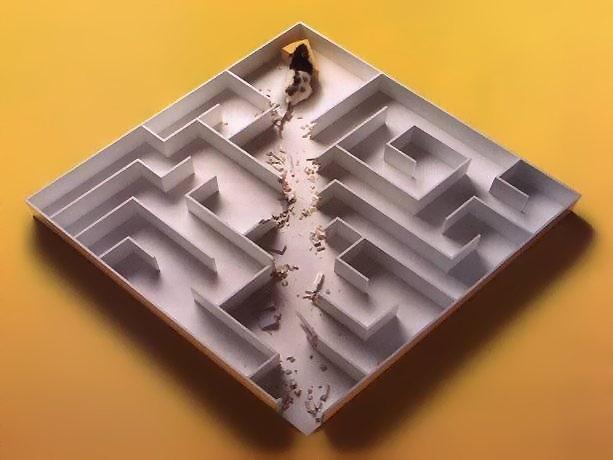 Maus durchbricht Wände im Labyrinth